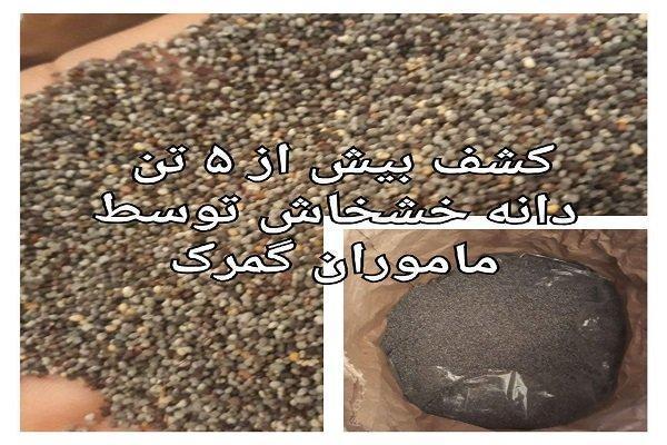 کشف بیش از 5 تن دانه خشخاش در یک تریلر