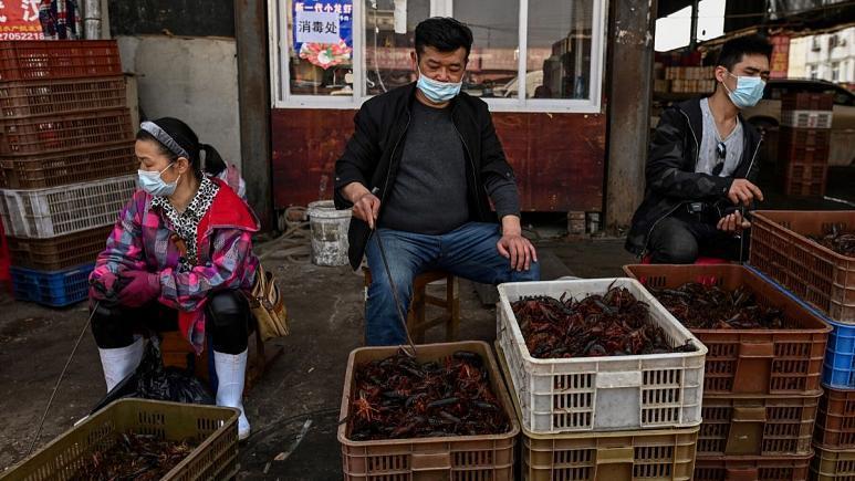 بازار حیوانات زنده ووهان دوباره باز شد