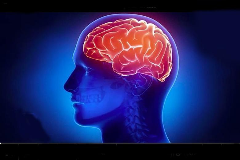 مغز یک فرد مبتلا به کرونا چه شکلی می گردد؟ (عکس)
